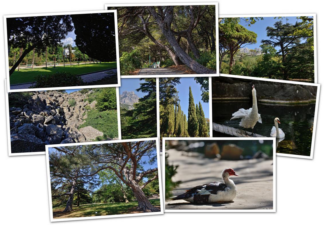 APC_Collage - 2020.05.02 08.43 - 001