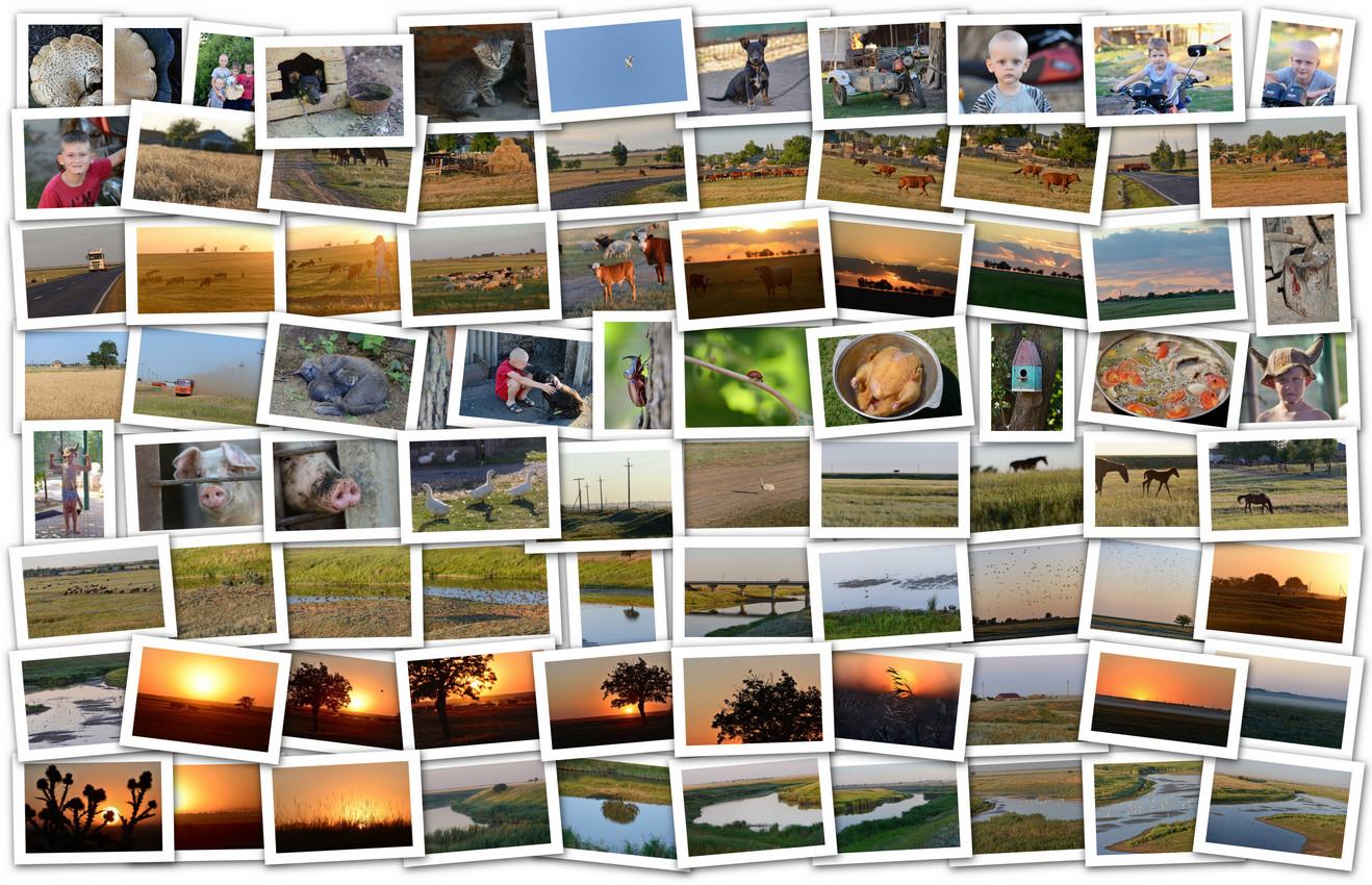 APC_Collage - 2020.07.05 17.39 - 001