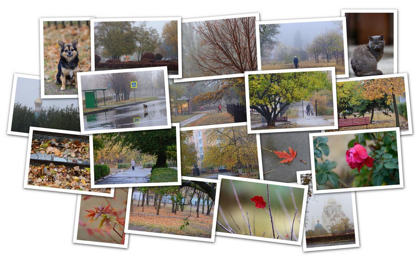 APC_Collage - 2020.10.31 09.47 - 001