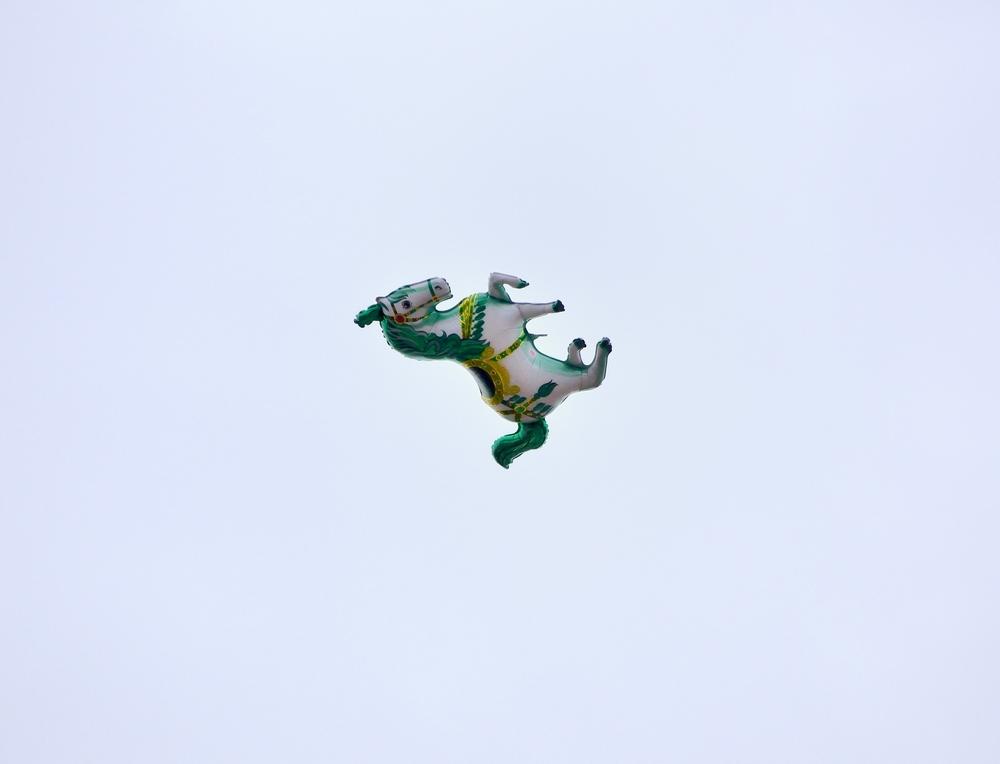 лошадка в небе