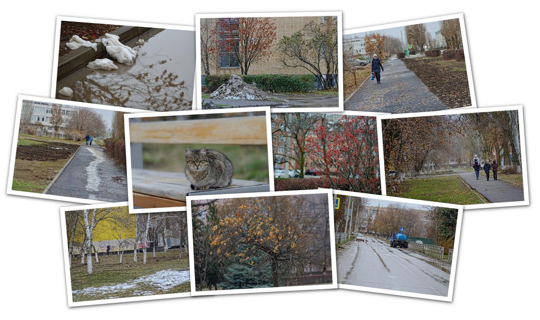 APC_Collage - 2020.11.29 21.12 - 001