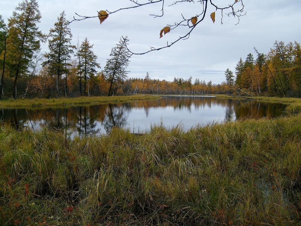 озеро снятое