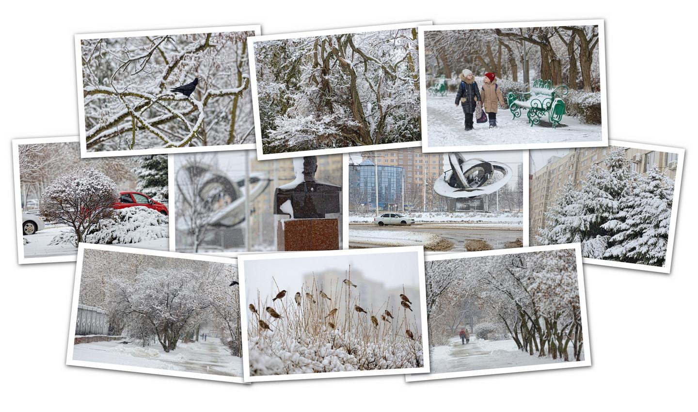 APC_Collage - 2021.03.03 21.14 - 001