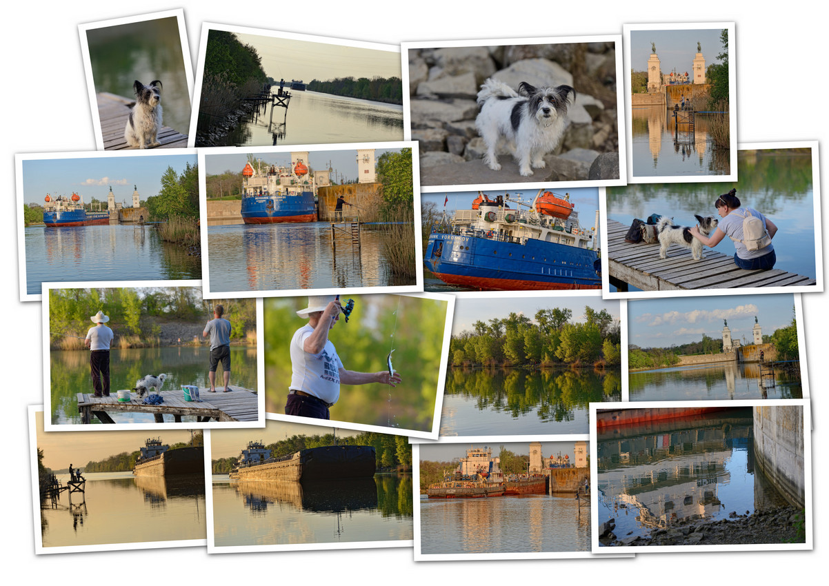 APC_Collage - 2021.05.09 19.11 - 001