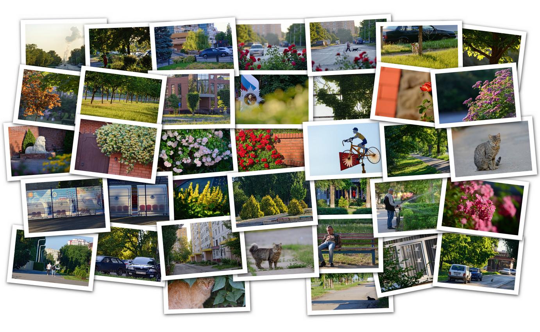 APC_Collage - 2021.06.12 13.02 - 001