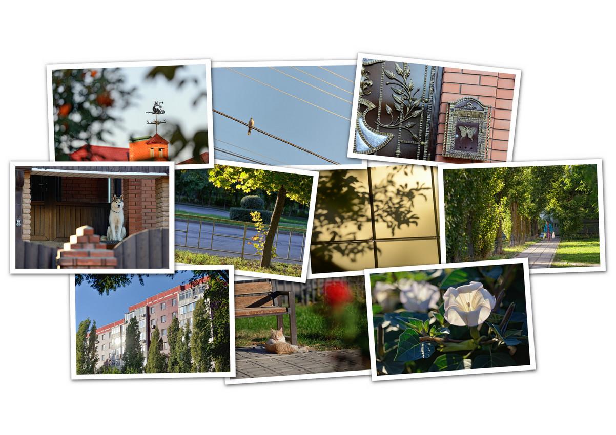 APC_Collage - 2021.09.11 22.23 - 001