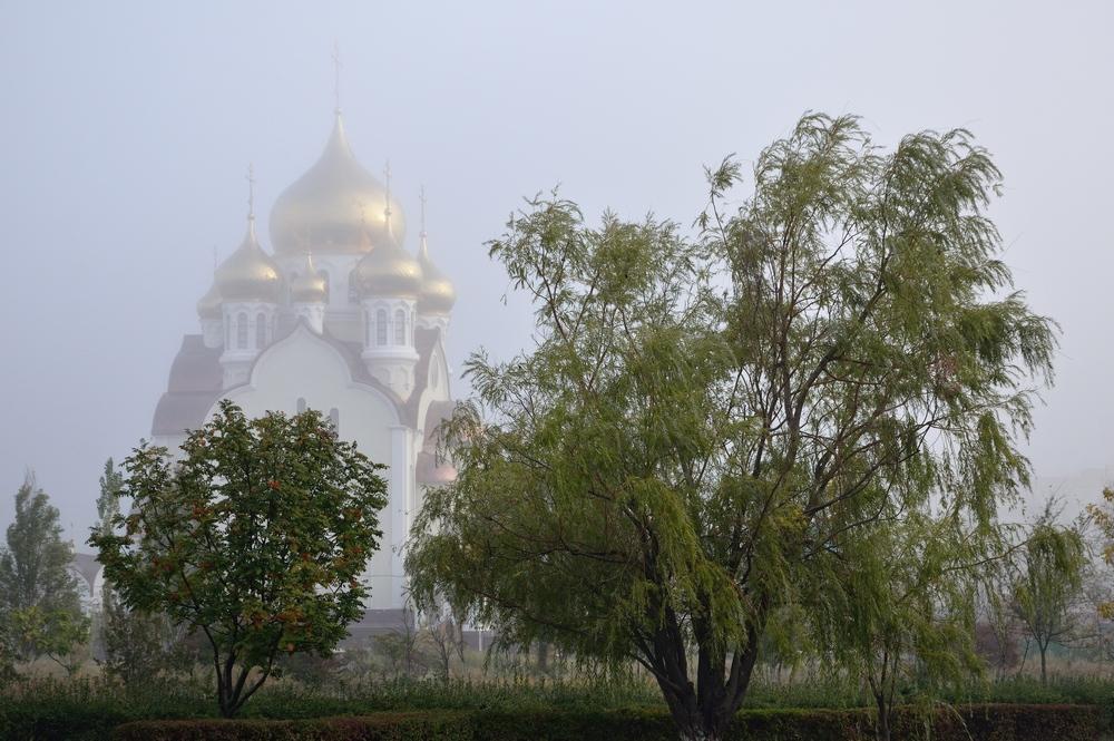 пейзаж с туманом