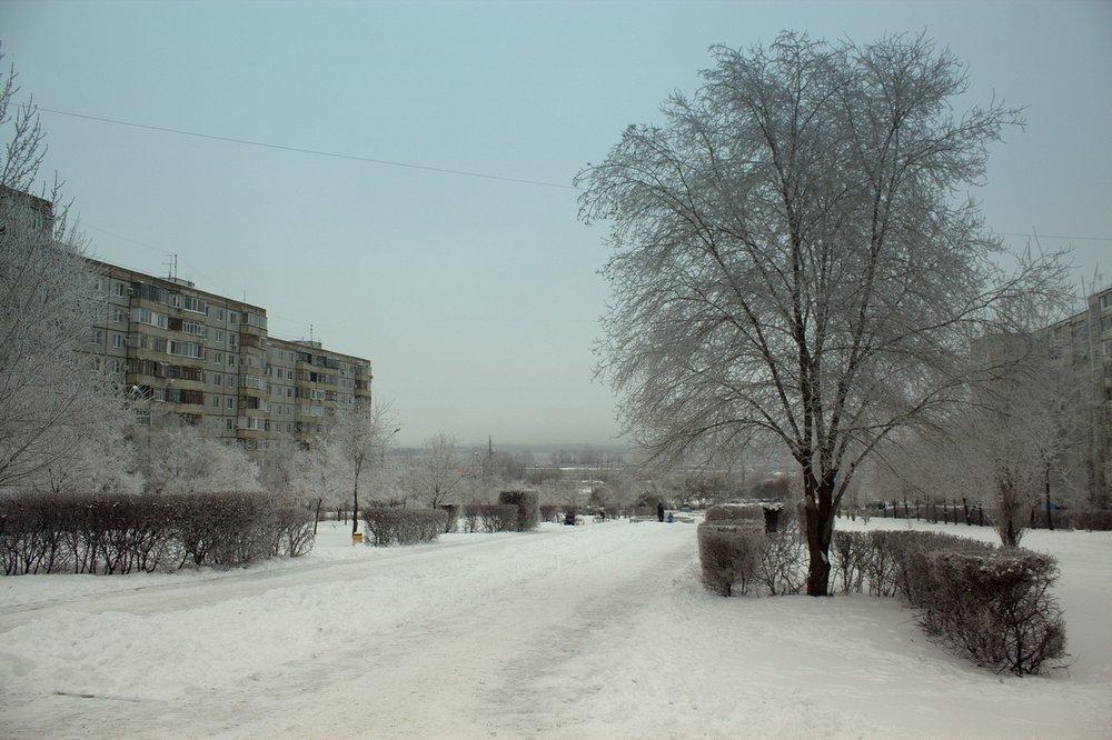 Лысый парк