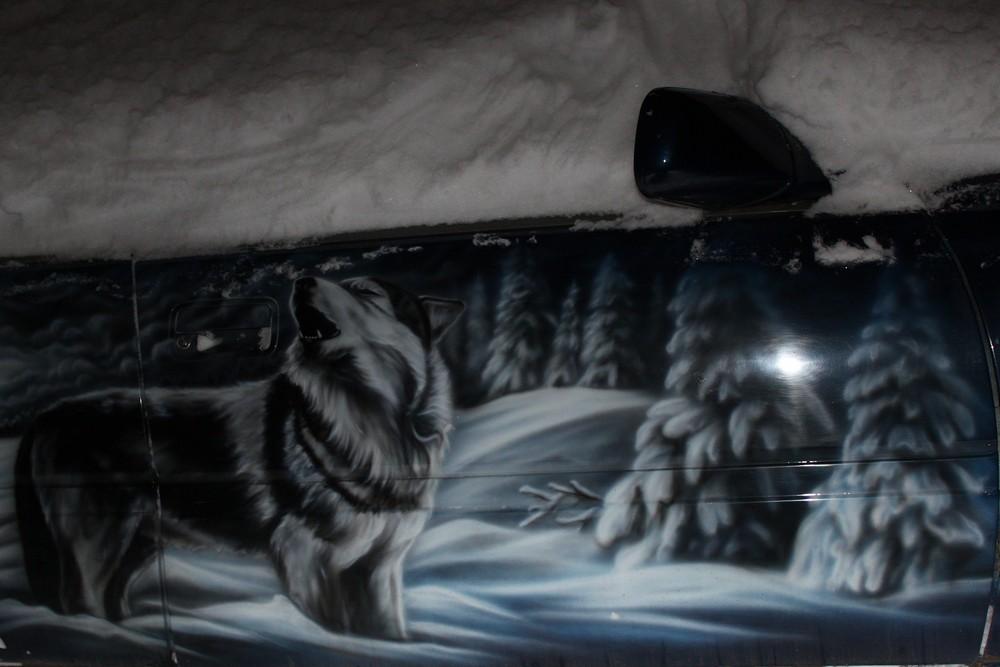 Холодно молодой волчице