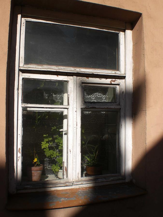 langai siltadarzio gatveje (1)_jeronimas