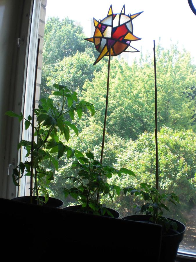 04_palange su pomidorais ir vitrazu
