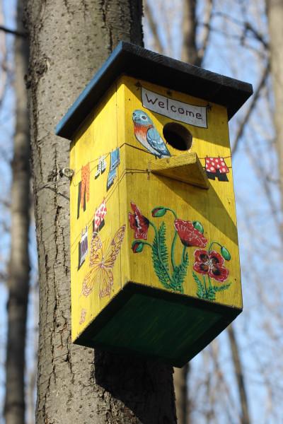 Как сделать скворечник для птиц ребёнку