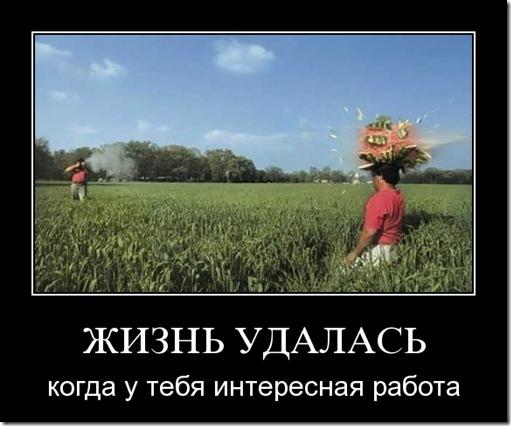 i_am_kusik: Продуктивность 101. Стив Павлина.