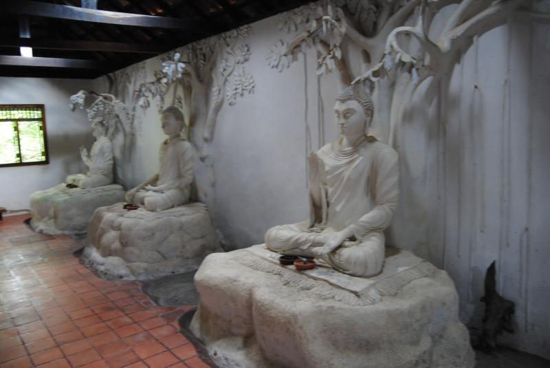 Кути на острове медитации, Шри Ланка. i_and_travels