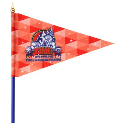 1 Cheering Flag