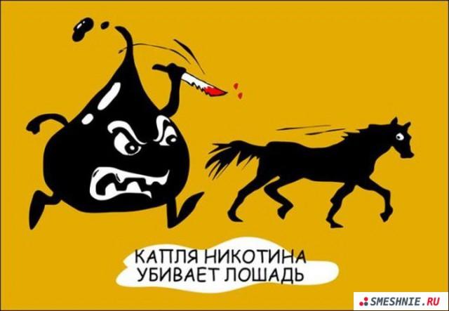 1334401501_Kaplya_nikotina_ubivaet_loshad