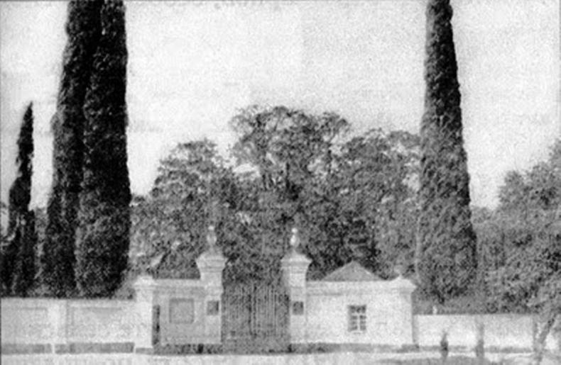 центральный вход в парк драчевского, 1914г