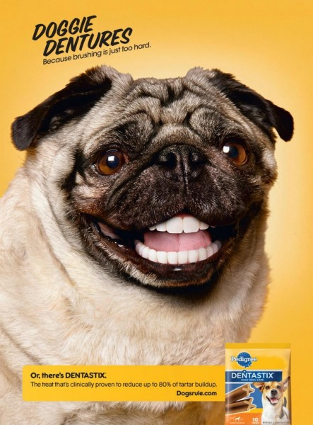 pedigree-dentastix-pug-1024-29129