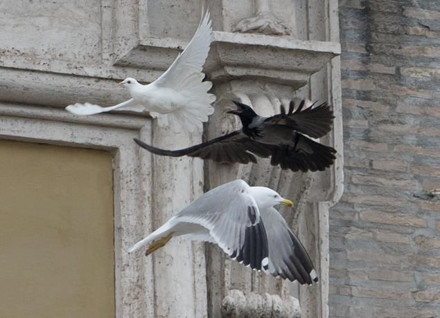 vatican-pope-doves