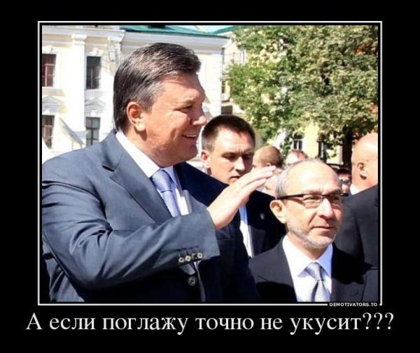 """Боты продолжают двигать """"Гепу"""" на пост президента Украины: """"Да пусть везде у нас побудет, страна наша"""" - Цензор.НЕТ 7008"""