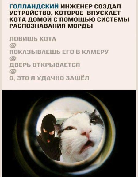 narodnoye_08.jpg