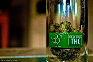 medical_marijuana_thc