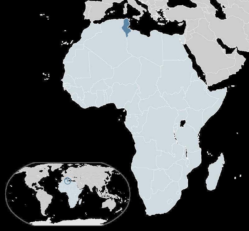 Тунис на карте Африки