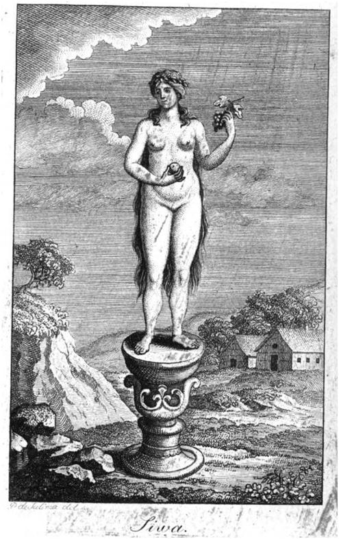 Cива. Иллюстрация из книги «Мифология славянская и российская» А.С. Кайсарова, 1804 год.