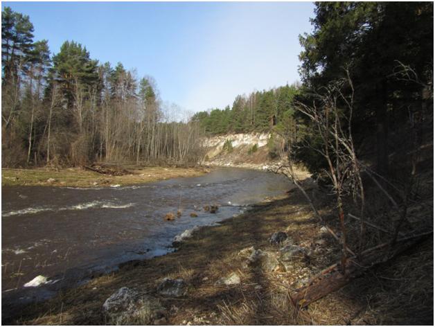 Река Руна (Тверская область)