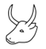 Египетский иероглиф «бычья голова»