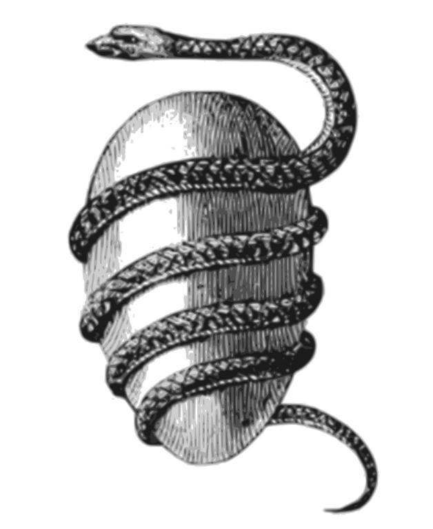 Орфическое яйцо, обвитое Офионом