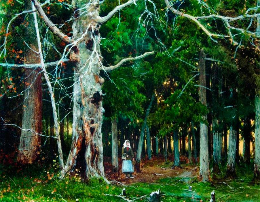 Еловый лес, 1907, Ульяновский областной художественный музей.jpg