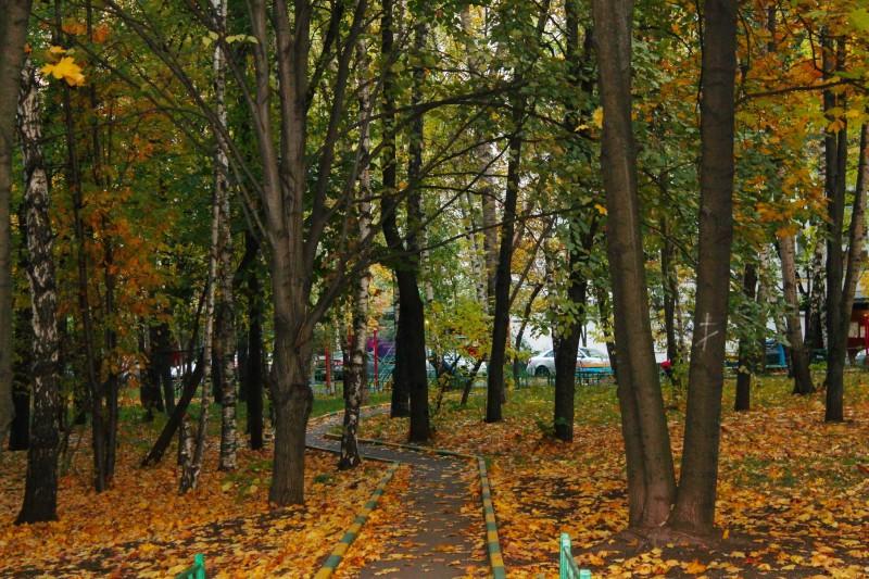 Люблю, когда листвой можно пошуршать...)))