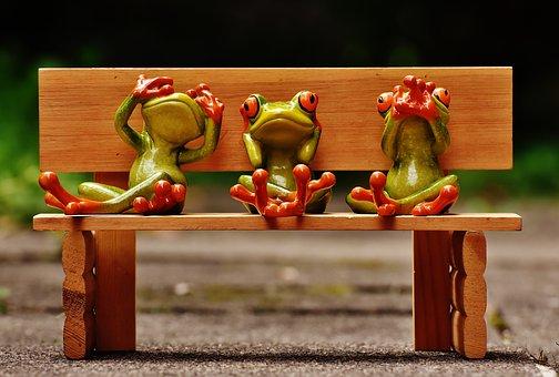 frogs-1610563__340.jpg