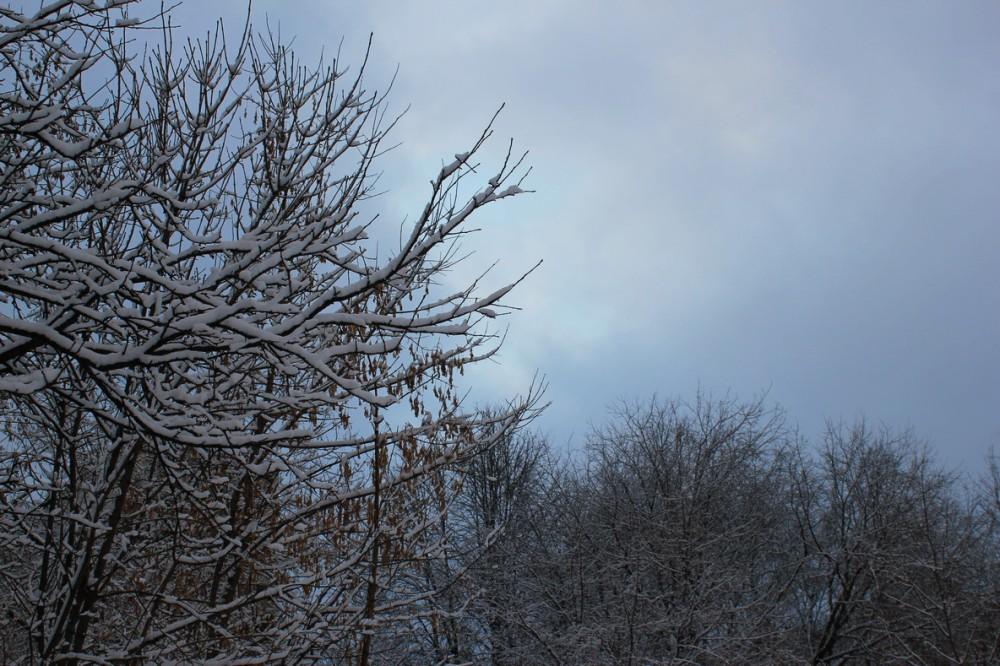 снежность 2.jpg
