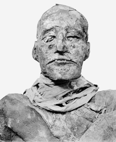 Ramses_III_mummy_head