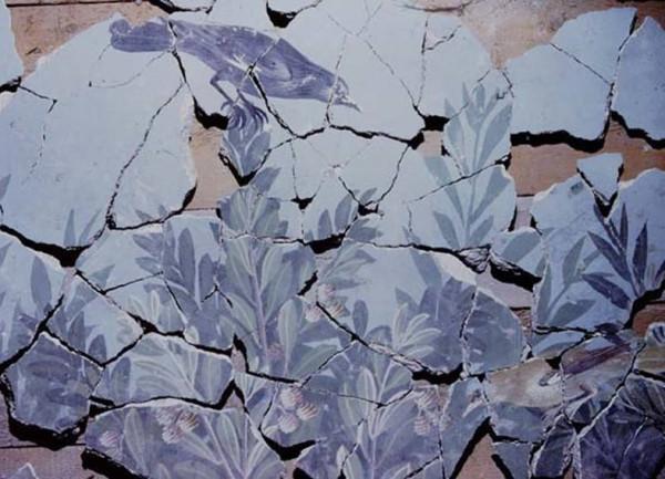 myna-pompeii