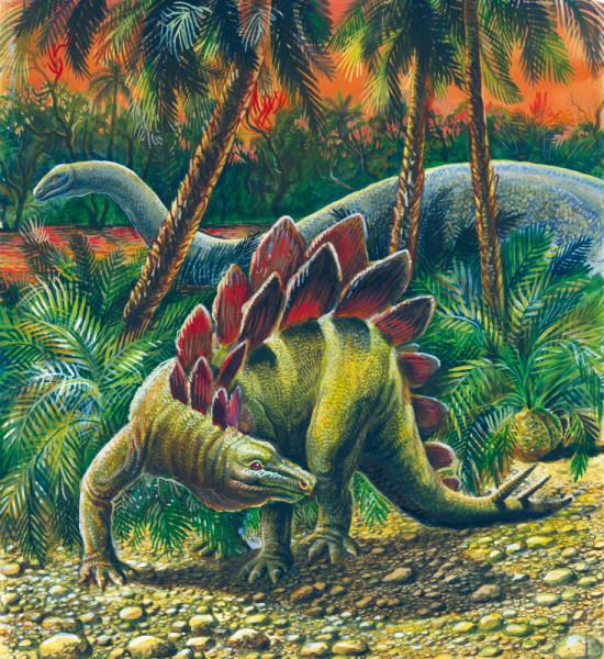 paleontology_011