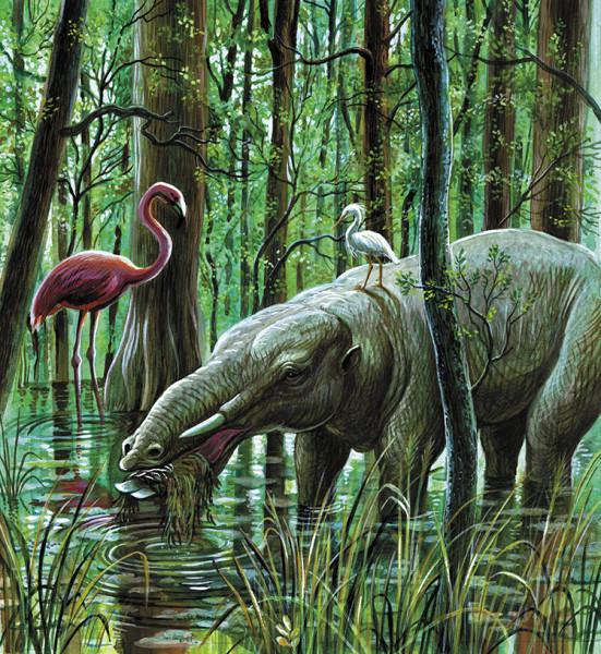paleontology_003