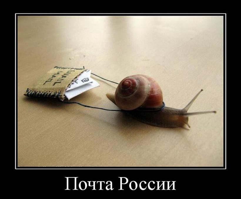 Приколы почта россии картинки, фото для