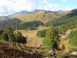 Вид с перевала на долину Псху
