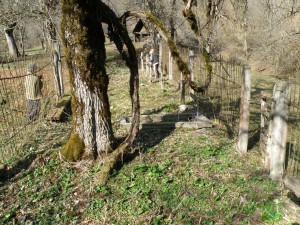 2 Ридза кладбище