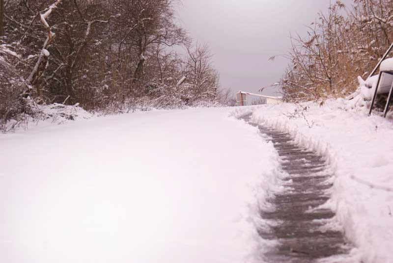 Янтарный дорога