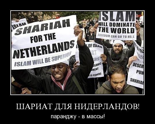 шариат для Нидерландов