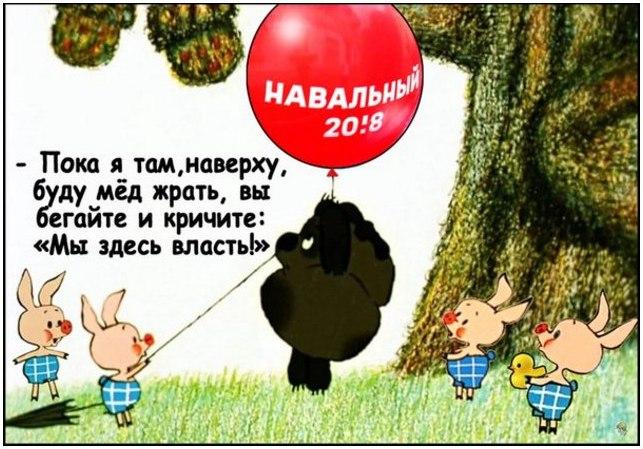 суть Навальсона