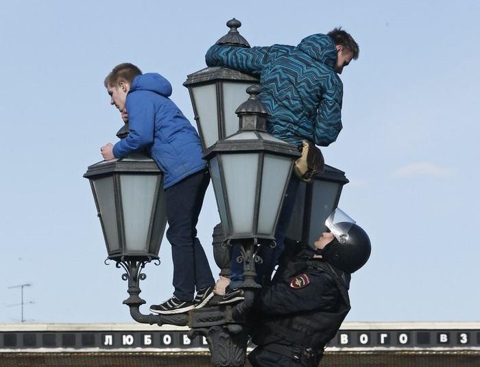 Шингаркин на фонаре