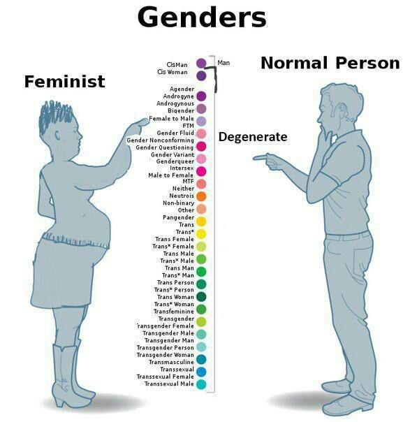 гендеры
