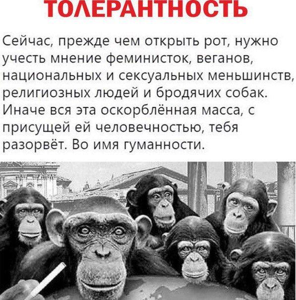 https://ic.pics.livejournal.com/ifc/46678941/1406026/1406026_900.jpg