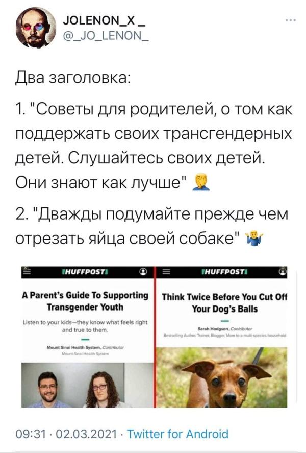 трансформеры и собачьи яйца
