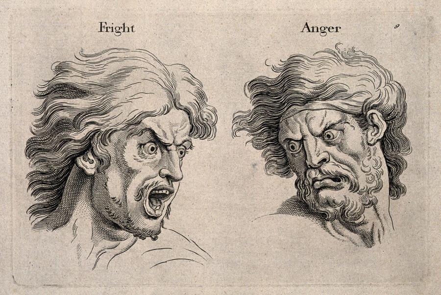 испуг и гнев